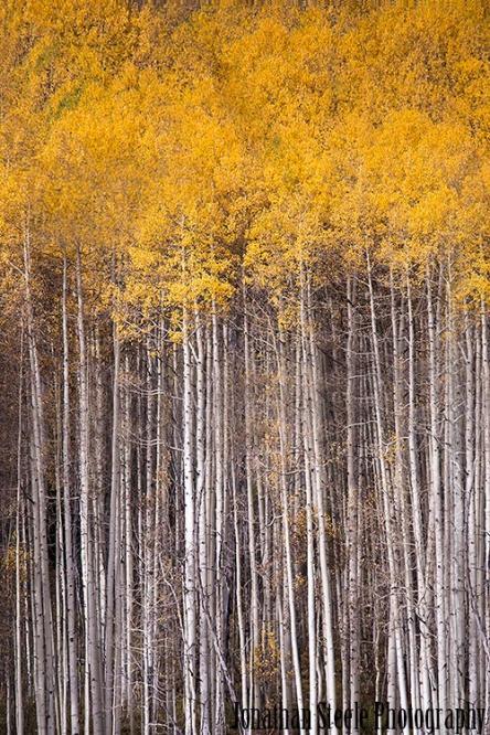 San Juan Mountains Colorado Autumn Fall Photography Workshops | Fall Autumn photography workshops in the San Juan Mountains of Colorado